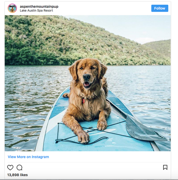Adventure Brands and the Impact of Video: Part 2-  Building  your Social Channels